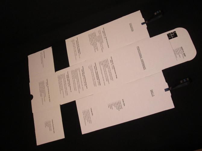 a future unfolding rÉsumÉ package 2011 above below design